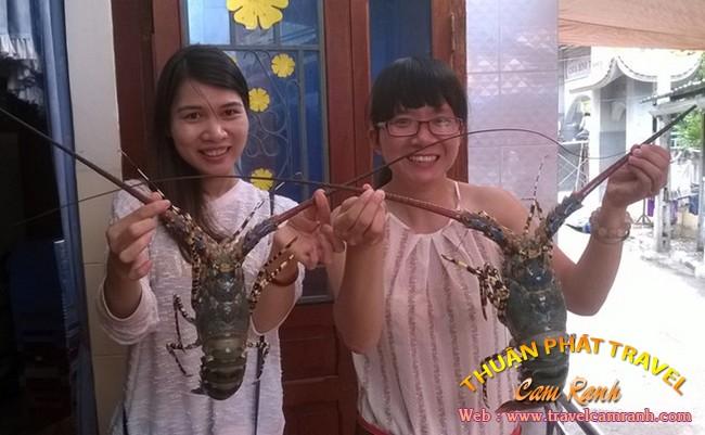 Tôm hùm Bình Ba, đặc sản ở biển đảo Bình Ba 003