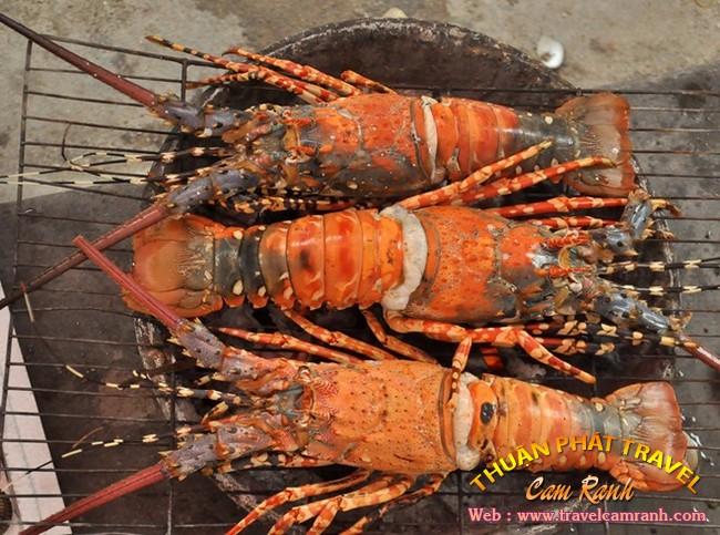 Tôm hùm Bình Ba, đặc sản ở biển đảo Bình Ba 006