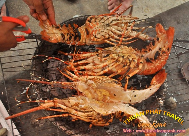 Tôm hùm Bình Ba, đặc sản ở biển đảo Bình Ba 007