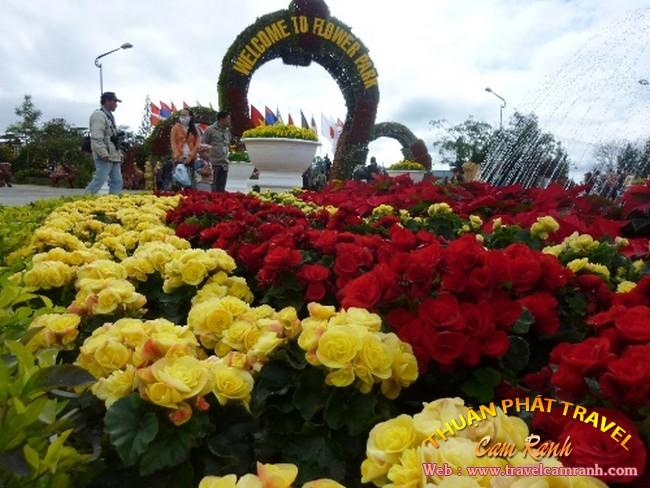 tour-da-lat-mong-mo-003